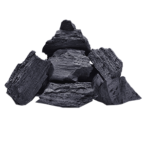 Carbon Vegetal 2,5 Kilos - El Huerto copia