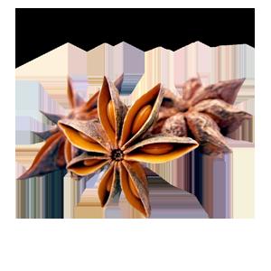 Estrella de Anís 50g - EL Huerto