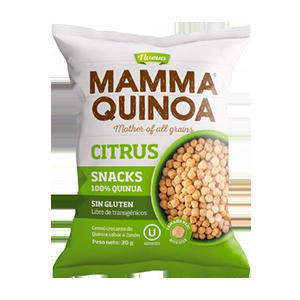 Snack de Quinoa sabor Citrico 30 grs